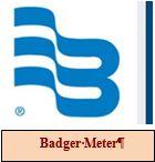 LG WEB Badger Meter Logo