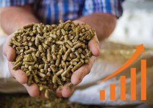 Feed-Grain-Facility-Control-System-Financing_WEM-Automation