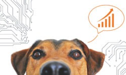 Pet-Food_Predictive-Preventative-Maintenance_WEM-Automation