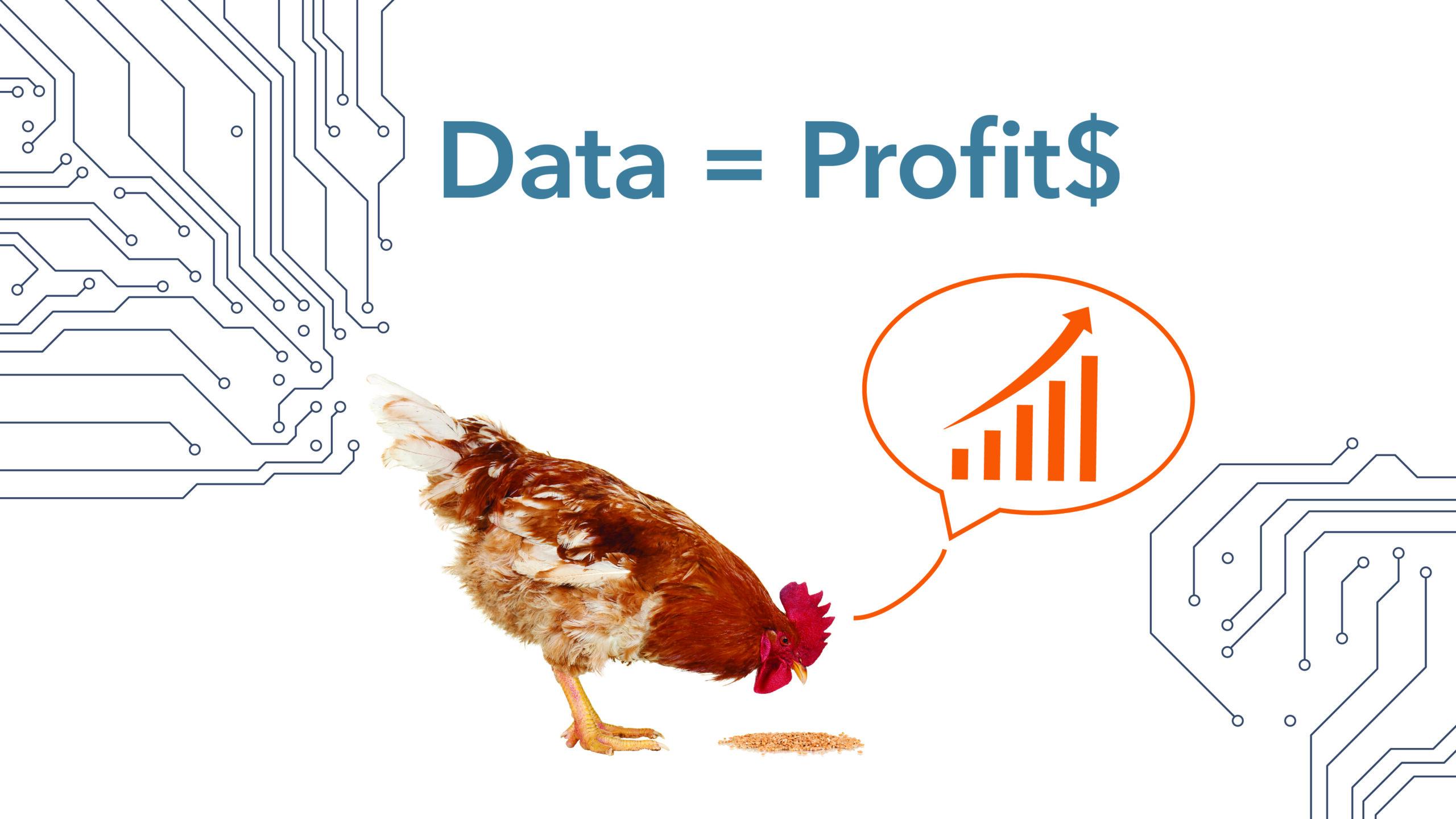 Feed_Data-into-Profit_WEM-Automation